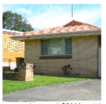 termite control - apartments