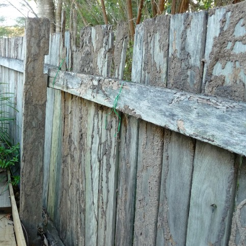 Termite Control - wooden-fence